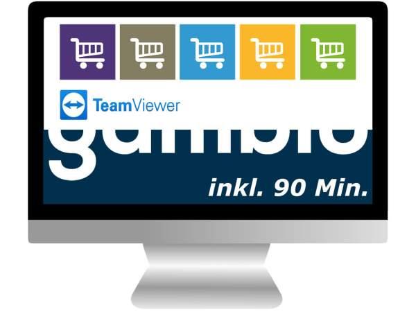 Shop Install 2 | Basis inkl. 90 Min. TeamViewer Hilfe