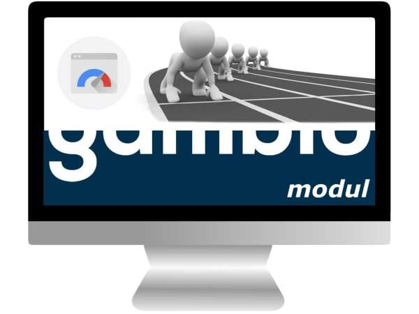 PageSpeed & Ladezeiten Modul - inkl. 1 Jahr Updates